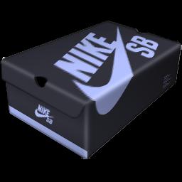 Milk Carton Nike Skateboarding